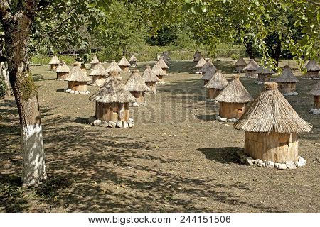 Apiary With Bee Hives In The Form Of Small Houses.