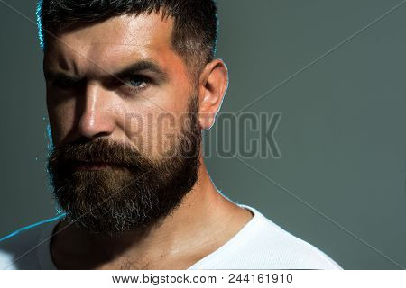 Fitness Man. Sexy Man With Beard&mustache. Brutal Bearded Man In White T-shirt. Portrait Of Fashiona