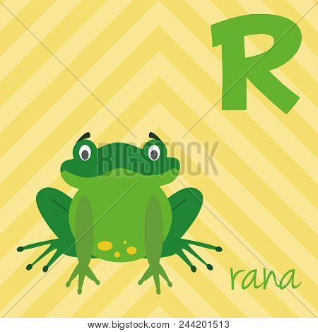 Cute Cartoon Zoo Illustrated Alphabet With Funny Animals. Spanish Alphabet: R For Rana. Learn To Rea