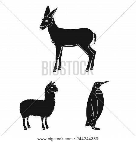Different Animals Black Icons In Set Collection For Design. Bird, Predator And Herbivore Vector Symb
