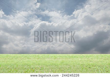 Front View Green Grass On Nature Background