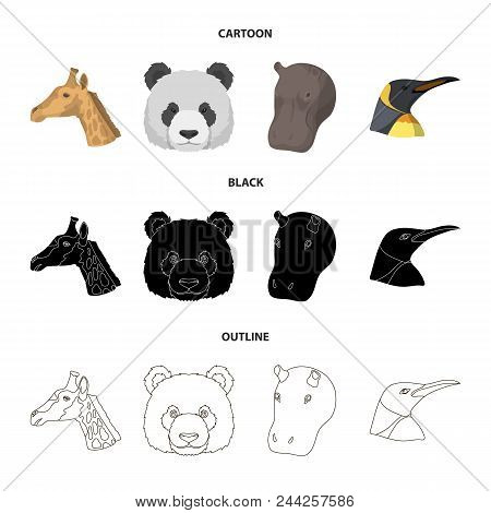 Panda, Giraffe, Hippopotamus, Penguin, Realistic Animals Set Collection Icons In Cartoon, Black, Out