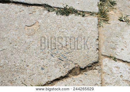Broken Sidewalk Tiles Close-up, Through Her Cracks And Cracks Grass Breaks Through
