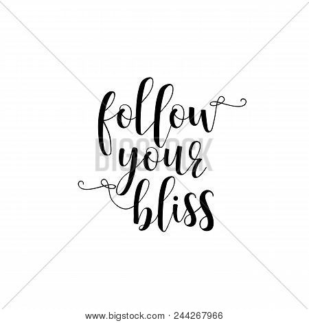 Follow your bliss. Lettering. Hand drawn vector illustration. element for flyers, banner and posters Modern calligraphy. poster