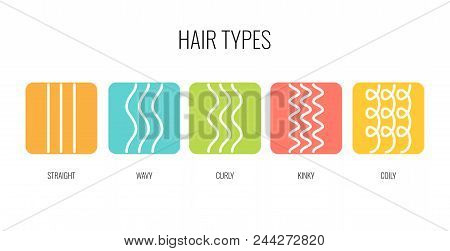 Vector Illustration Of A Hair Types Chart Displaying All Types And Labeled. Curl Types Icon Set For