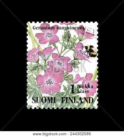Finland - Circa 1994 : Cancelled Postage Stamp Printed By Finland, That Shows Bloody Cranesbill Flow