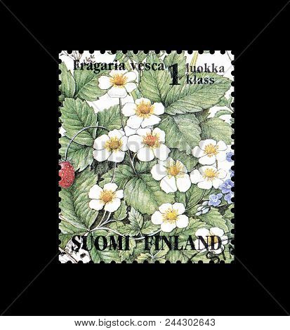 Finland - Circa 1994 : Cancelled Postage Stamp Printed By Finland, That Shows Wild Strawberries.