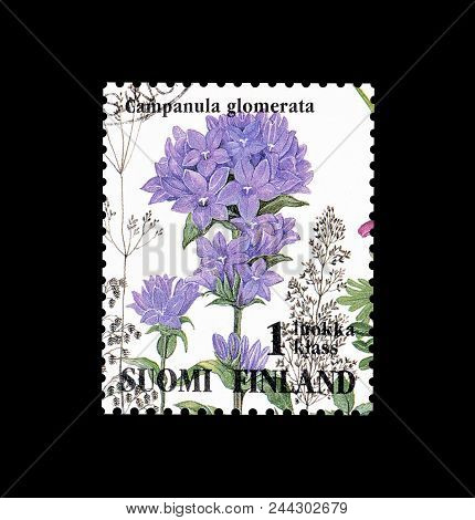 Finland - Circa 1994 : Cancelled Postage Stamp Printed By Finland, That Shows Clustered Bell Flower.