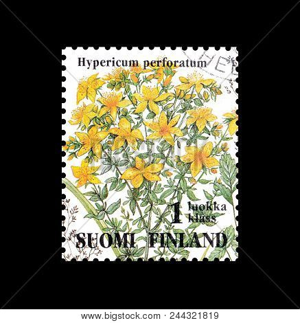 Finland - Circa 1994 : Cancelled Postage Stamp Printed By Finland, That Shows St John Wort Flower.