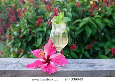 Homemade Mojito Cocktail With Ice In Hurricane Glass With Green Mint And Pink Hibiscus Garnish With