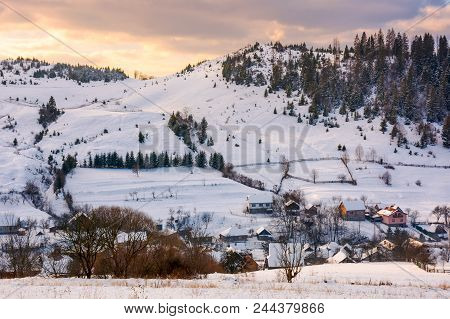 Village Down The Hill On Winter Sunset. Lovely Mountainous Countryside Of Carpathians. Spruce Forest