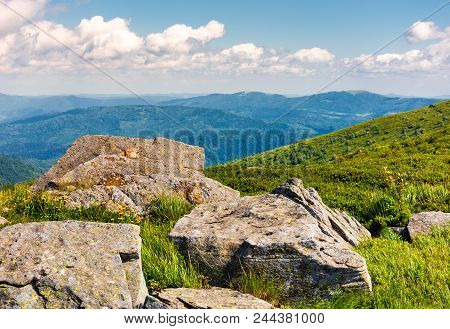 Rocks On The Edge Of A Grassy Hillside. Yellow Dandelions Among The Rocks. Beautiful Nature Scenery