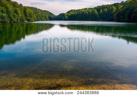 Trout Near The Shore Of Wild Lake. Beautiful Summer Landscape. Location Morske Oko Lake Of Slovakia.