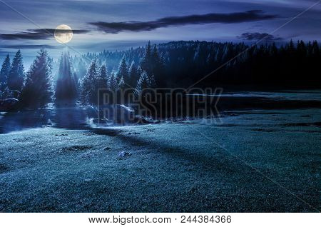 Forest On Grassy Meadow At Foggy Night In Full Moon Light. Lovely Nature Scenery With Forested Hill