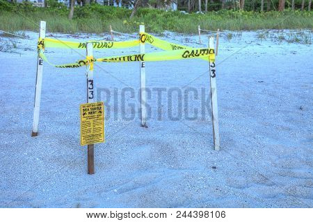 Fenced Off Nest Of A Green Sea Turtle Chelonia Mydas On Naples Beach In Naples, Florida, Usa