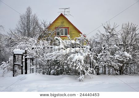 Winter Rural Landscape