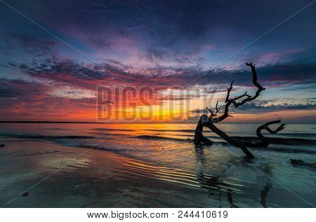 Battling Dragons: Sunrise Of The Atlantic Ocean On A Beach With Driftwood Entrenched In The Sand, Fl