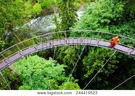 Vancouver - Jun 29, 2011: A Visitor Explores The Vancouver Capilano Cliff Walk Through Rainforest Ve
