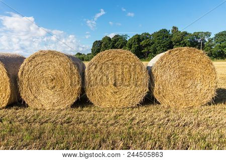 Round Bales Of Straw On A Beveled Field