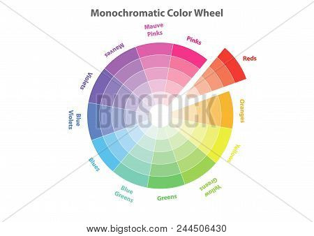 Monochromatic Color Wheel, Color Scheme Theory, Yellows Color In Evidence, Vector Isolated Or White