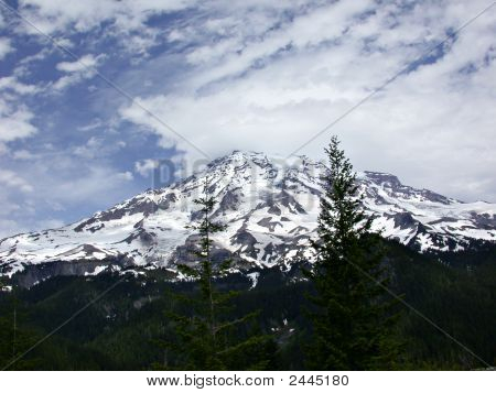 Mt Rainier - Early Summer