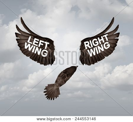 Political Crisis As A Destructive Right Wing And Left Wing Political Problem And Ideology Divided Me