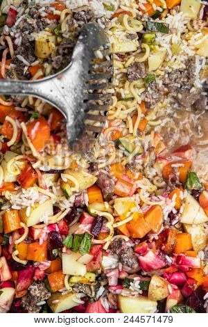 Topview, Selfmade Dog Food At Home, Vegetables, Rice And Meat With A Scoop On It