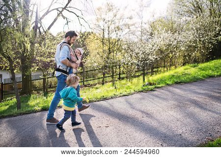 A Father With His Two Toddler Children Outside On A Sunny Spring Walk. A Baby Girl In A Carrier, A T