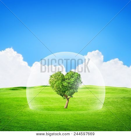3d Illustration. Heart Shaped Tree Under Glass Protection. Concept Abstract Image