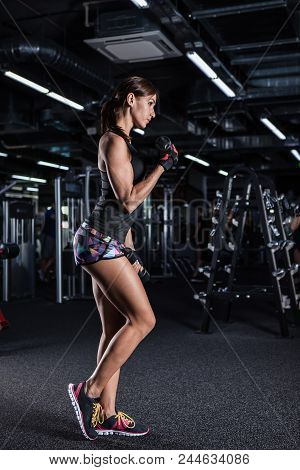 Muscular Woman Doing Exercises With Dumbbells At Biceps.  Athletic Fitness Woman Pumping Up Muscles