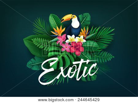 Vector Tropical Banner. Summer Design For Flyer With Toucan And Tropical Leaves And Flowers. Illustr