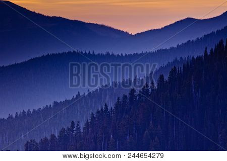 Layers Of Mountains Silhouettes In The Fog At Sunset, Pacific North West, Olympic National Park, Was