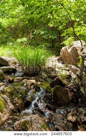 Small Water Cascade Over Wall Of Rocks In A Creek
