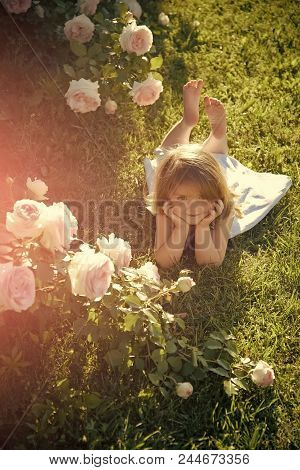 Child With Cute Smile At Blossoming Rose Flowers. Growth And Flourishing. Innocence, Purity And Yout