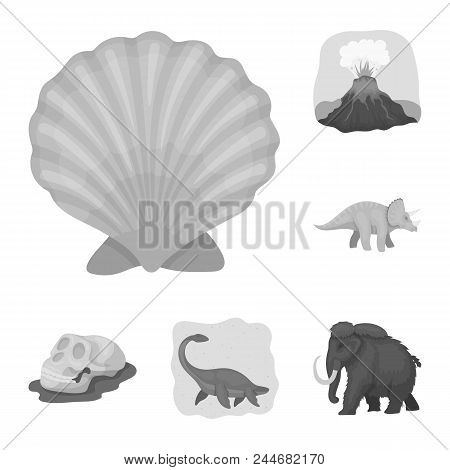 Different Dinosaurs Monochrome Icons In Set Collection For Design. Prehistoric Animal Vector Symbol