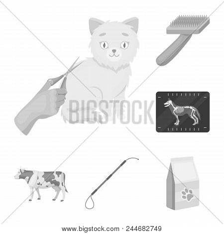 Veterinary Clinic Monochrome Icons In Set Collection For Design. Treatment Of A Pet Vector Symbol St