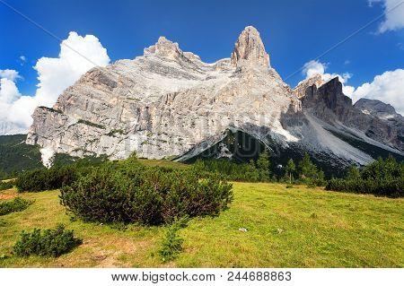 View Of Monte Pelmo With Mountain Pine, South Tirol, Dolomites Mountains, Italien European Alps