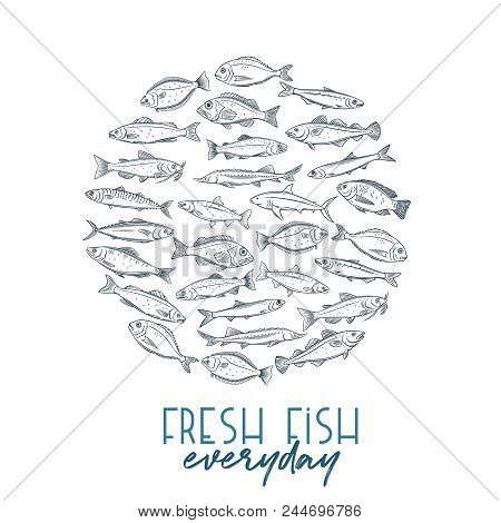 Vector Round Banner Hand Drawn Fish. Design Seafood With Bream, Mackerel, Tunny Or Sterlet, Codfish