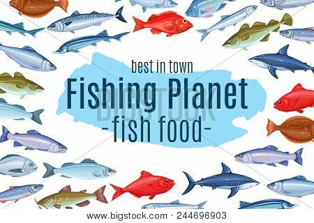 Vector Page Design With Fish. Seafood Poster Design With Salmon, Anchovy, Codfish, Sea Bass, Ocean P
