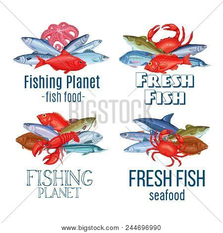 Set Vector Banners Fish. Seafood Labels Design With Salmon, Anchovy, Codfish, Sea Bass, Ocean Perch