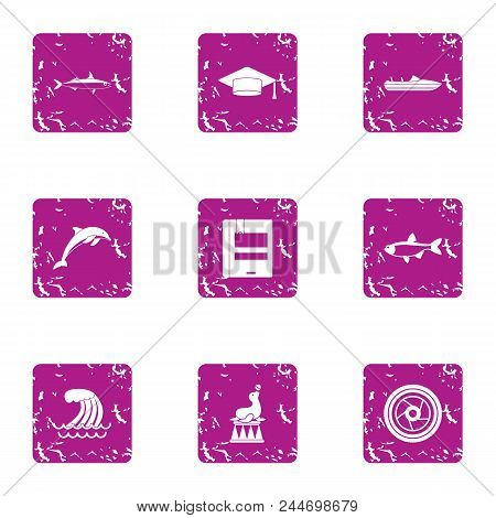 Representation On The Water Icons Set. Grunge Set Of 9 Representation On The Water Vector Icons For