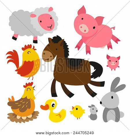 Animals Character Design, Cute Animals Collection, Animals Set