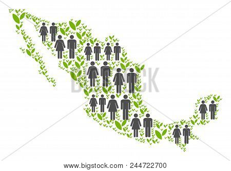People Population And Flora Plants Mexico Map. Vector Pattern Of Mexico Map Created Of Randomized Ma
