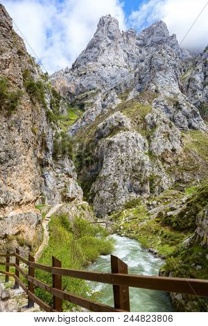View from hiking trail (Cares Trail or Ruta del Cares) along river Cares in spring ( near  Cain), Picos de Europa National Park,  province of Leon,  Spain.