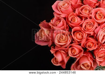 Set of bouquet orange rose on black background
