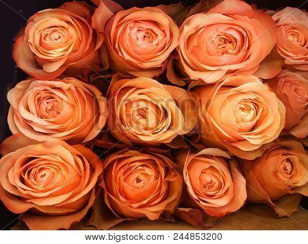 bouquet orange rose in shop