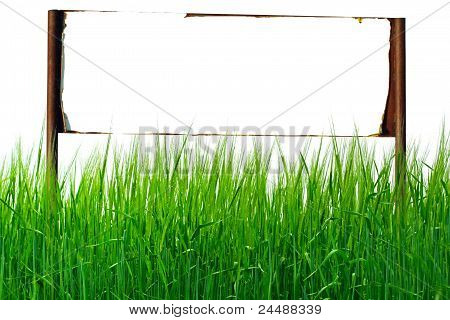 Signpost In The Grass