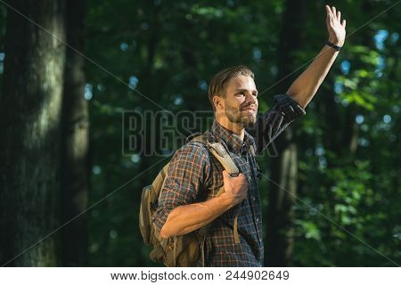 Travel, Tourism, Hike, Adventure Concept - Traveler With Backpack In Woods. Camping, Walking, Backpa