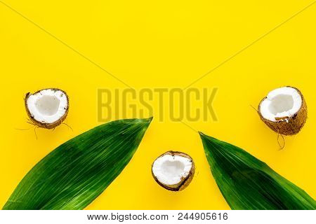 Tropical Composition With Coconut. Whole Coconuts And Coconut Cut In Half Near Pulm Leaves On Yellow