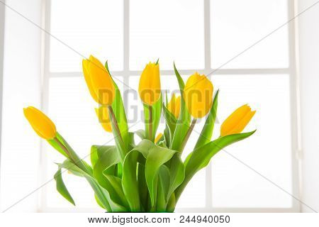 Beautiful Flowers Bouquet Background. Yellow Tulips In Window Backlight With Copy Space. Mockup For